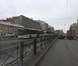 Обрыв повода остановил движение транспорта на Лиговском проспекте