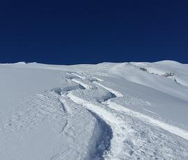 Названа дата слушаний в CAS по делам отстраненных российских лыжников