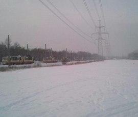 В заснеженной Балтийской Жемчужине остановилось движение трамваев