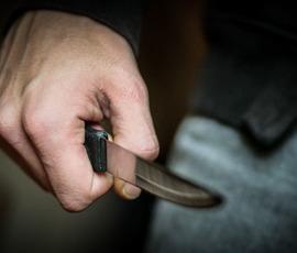 Житель Сестрорецка пырнул ножом жену и дочь-школьницу
