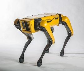 Люди издеваются над роботами-собаками