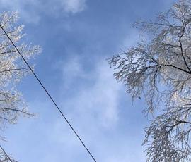 Последний день зимы в Петербурге будет морозным