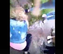 Видео с избиением школьницы из Тихвина заинтересовало полицию