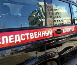 Пьяные школьницы из Барнаула сняли избиение сверстницы на видео