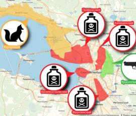 Хлеб с отравой и фарш с таблетками: как спасти собаку от догхантера