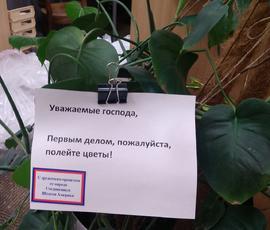 Сотрудники консульства США в Петербурге попросили новых хозяев поливать цветы