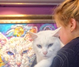 """В """"Республике кошек"""" прошла выставка необычного художника"""