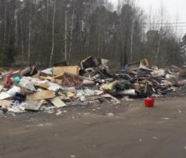 Жители Кировских дач утопают в горах мусора