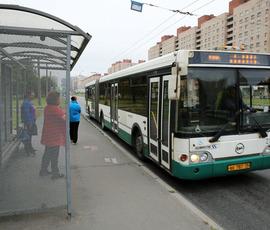 В Петербурге возобновляют автобусные маршруты для дачников