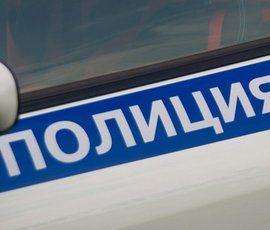 """Несанкционированный """"Марш мира"""" на Невском """"свернули"""" полицейские"""