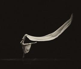 В США не пустили приму-балерину Большого театра