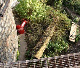 В Калининградском зоопарке тигр напал на человека