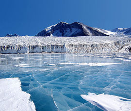 """В Антарктиде впервые пройдет шествие """"Бессмертного полка"""""""