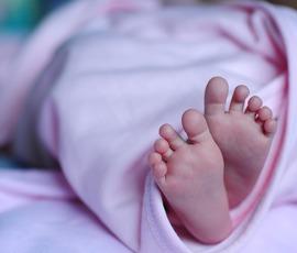 СК в Петербурге возбудило дело после обнаружения новорожденного в холодильнике