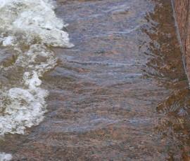В Купчино утонул еще один мужчина