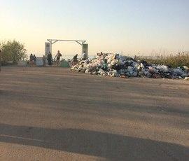 Прокуратура требует убрать несанкционированную свалку рядом с пляжем в Красносельском районе
