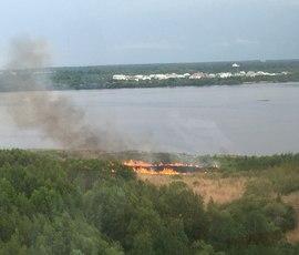В Санкт-Петербурге в огненном кольце горит Юнтоловский заказник