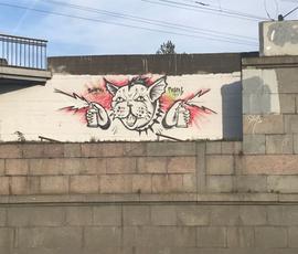 Уличному художнику в Петербурге грозит до трех лет за граффити с котом