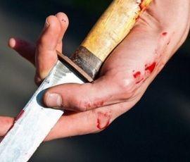 Жительницу Ленобласти спасли от убийцы с ножом