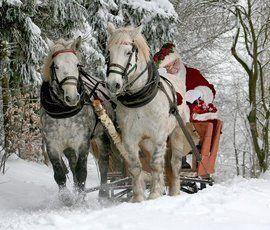 Дед Мороз хочет пойти на матчи ЧМ-2018