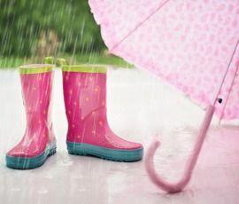 В Петербурге прольется весенний дождь