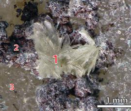 Петербургские ученые открыли новый минерал