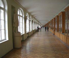 Кампус СПбГУ построят в границах Петербурга