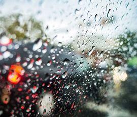 Дождь объявил в Петербурге желтый уровень погодной опасности