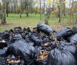 В Петербурге начинается борьба за мусорный рынок