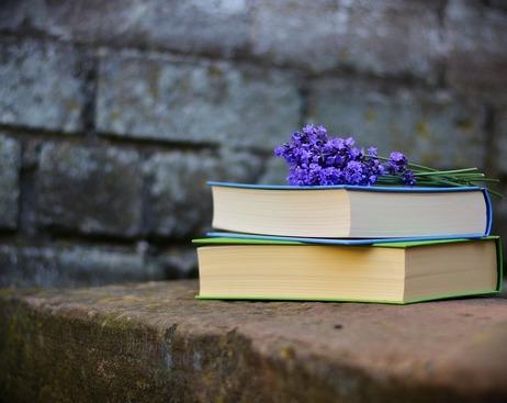 Куда сдать ненужные книги в Петербурге