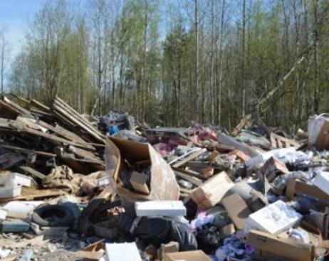 Комитет по природопользованию вынес штрафов на 1,5 млн рублей