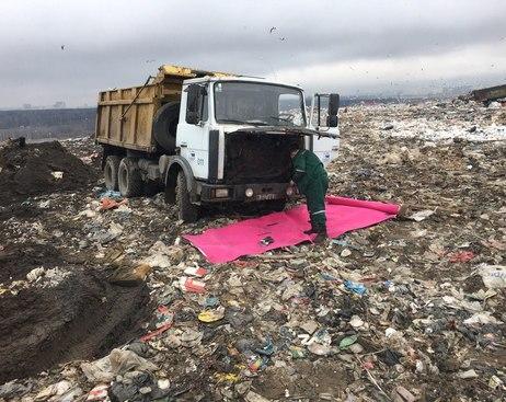 В Курортном районе два учреждения загрязняют окружающую среду