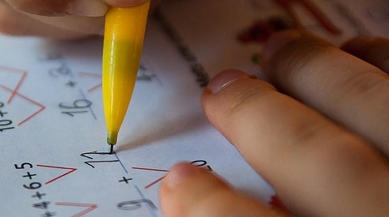 ВПетербурге стартовала 2-ая волна записи детей в 1-ый класс