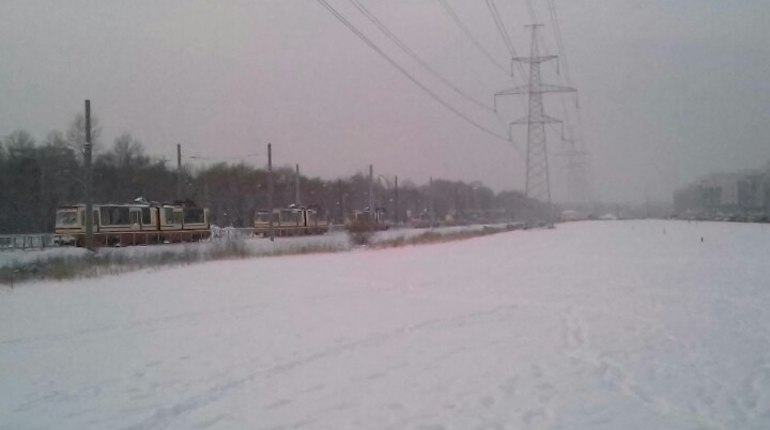 Пробка из трамваев скопилась на Петергофском шоссе рядом с жилым кварталом Балтийская Жемчужина в Красносельском районе Петербурга. По предварительной информации, причина в поломке светофоров.