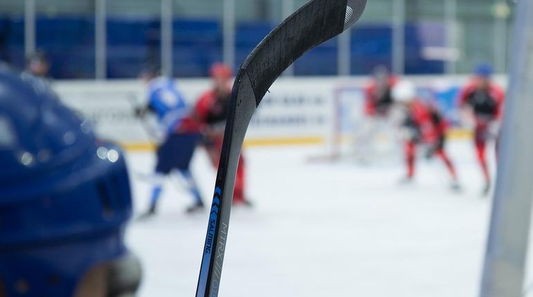 Межведомственная комиссия по согласованию перспективных заявок Совета при президенте РФ по развитию физической культуры и спорта согласовала заявку Петербурга на проведение в 2024 году чемпионата мира по хоккею.