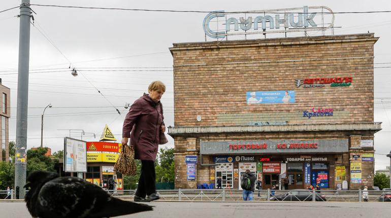 Защитники кладбища атаковали миллиардера Мамишева
