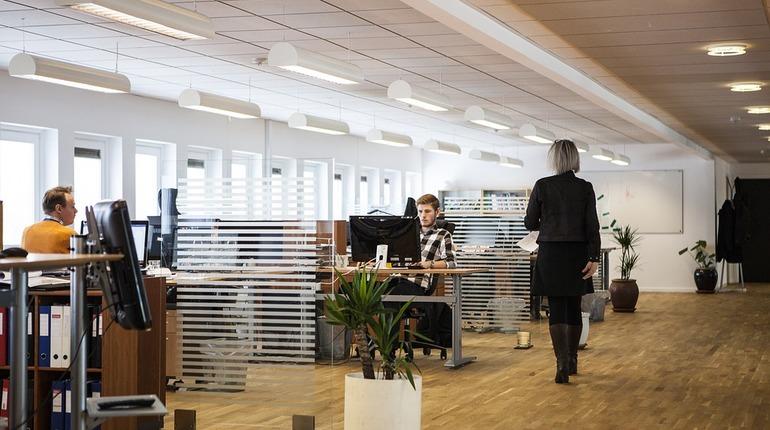 Сколько петербуржцев работают по профессии