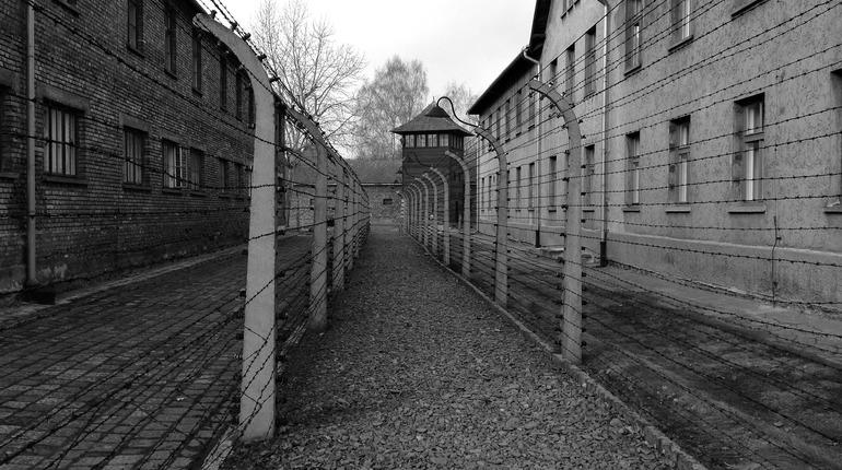 Вице-президент Европарламента забыла про советскую армию, говоря об освобождении Освенцима