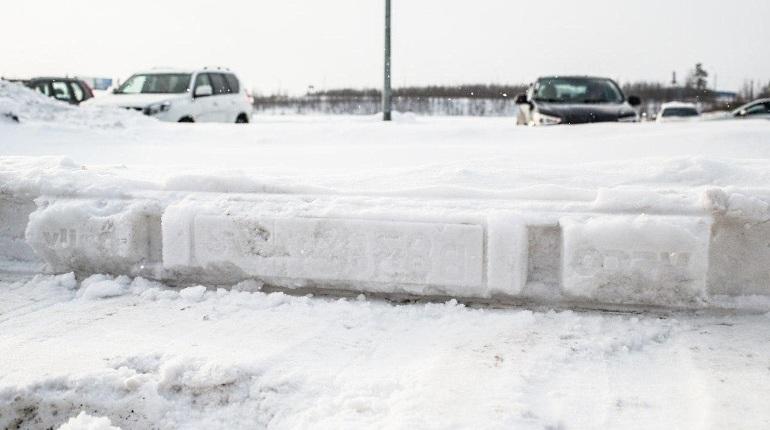 Колесов: Изменение ветра завершит снегопад вПетербурге