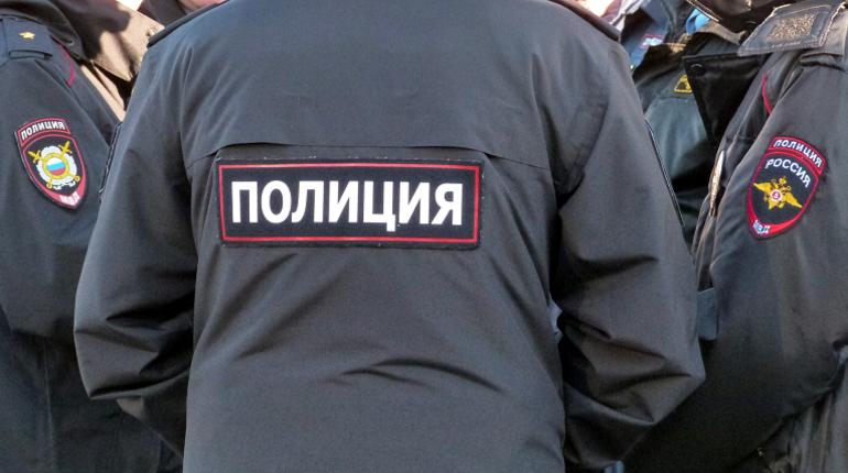 Суд оштрафовал петербурженку, побившую полицейского