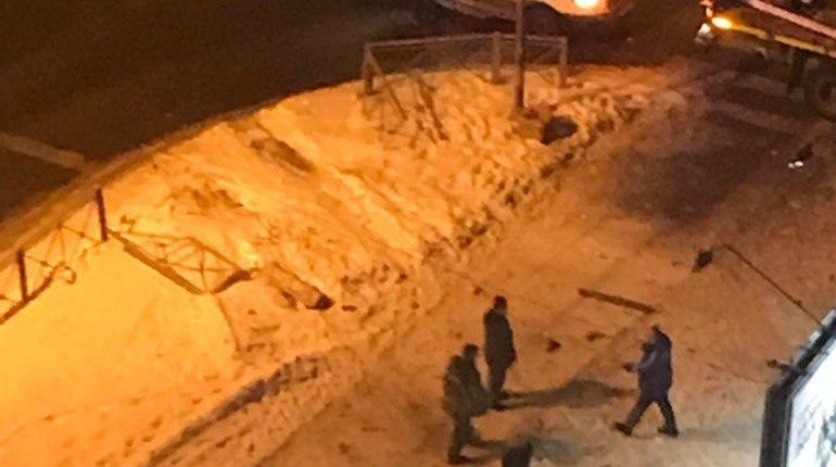 ВПетербурге автомобиль вылетел натротуар исбил ребенка— свидетели