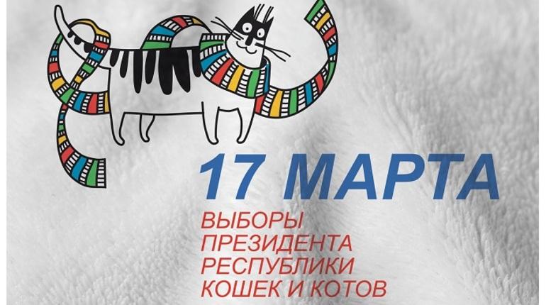Досрочные выборы кота-президента пройдут в Петербурге