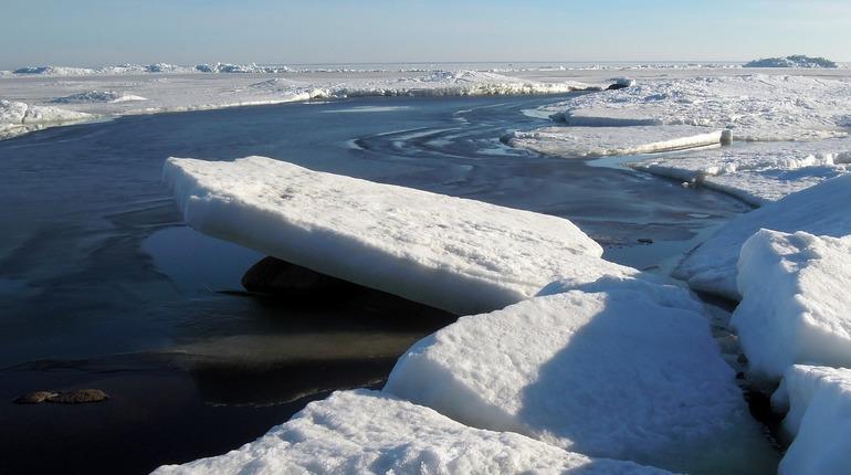 В Финском заливе терпит бедствие сухогруз из Панамы