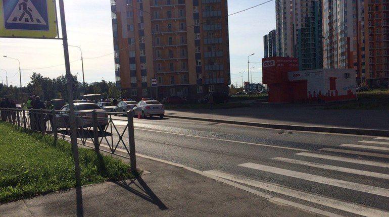 Машина Росгвардии сбила ребенка на Муринской дороге
