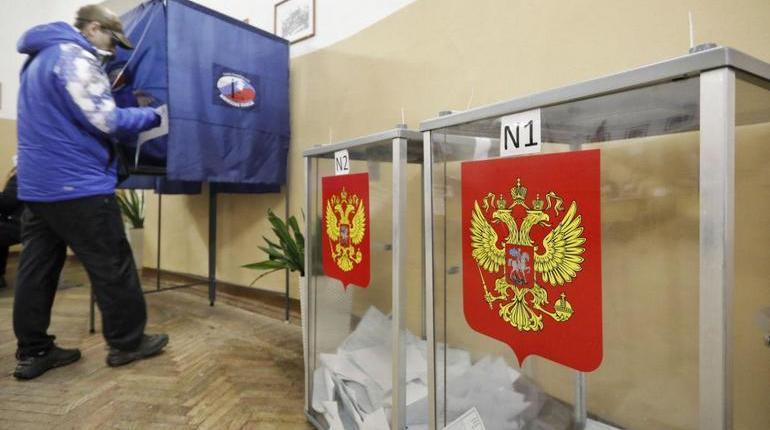 Почти 400 тыс. избирателей в Петербурге проголосуют не по месту жительства