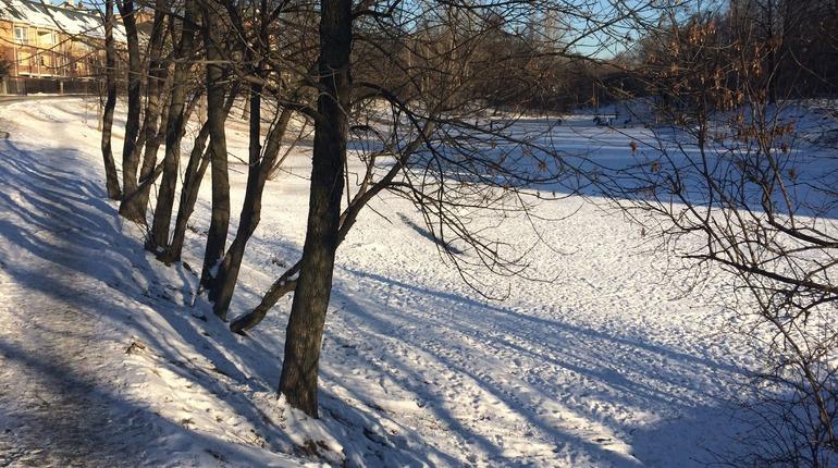 Стародавний парк усадьбы Орловых-Денисовых восстановят за31 млн руб.