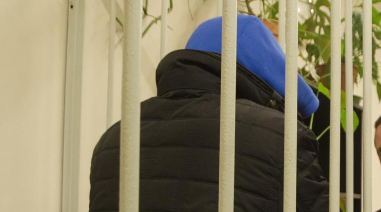 Жителя Ленобласти приговорили к 8-ми годам запризывы ктерроризму