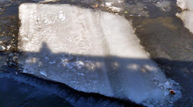 Нареках иканалах вПетербурге начали вскрывать лед