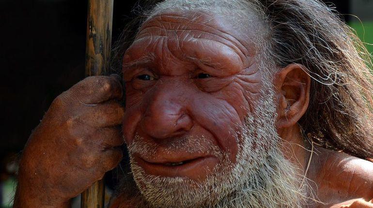 Жители Африки унаследовали от неизвестного вида древних людей ген, подавляющий опухоли