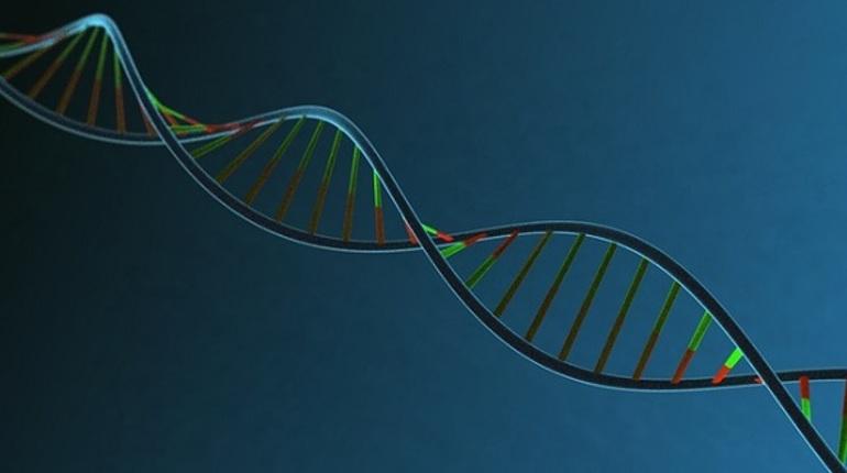 Французские химики получили искусственный пообразу иподобию двойной спирали ДНК